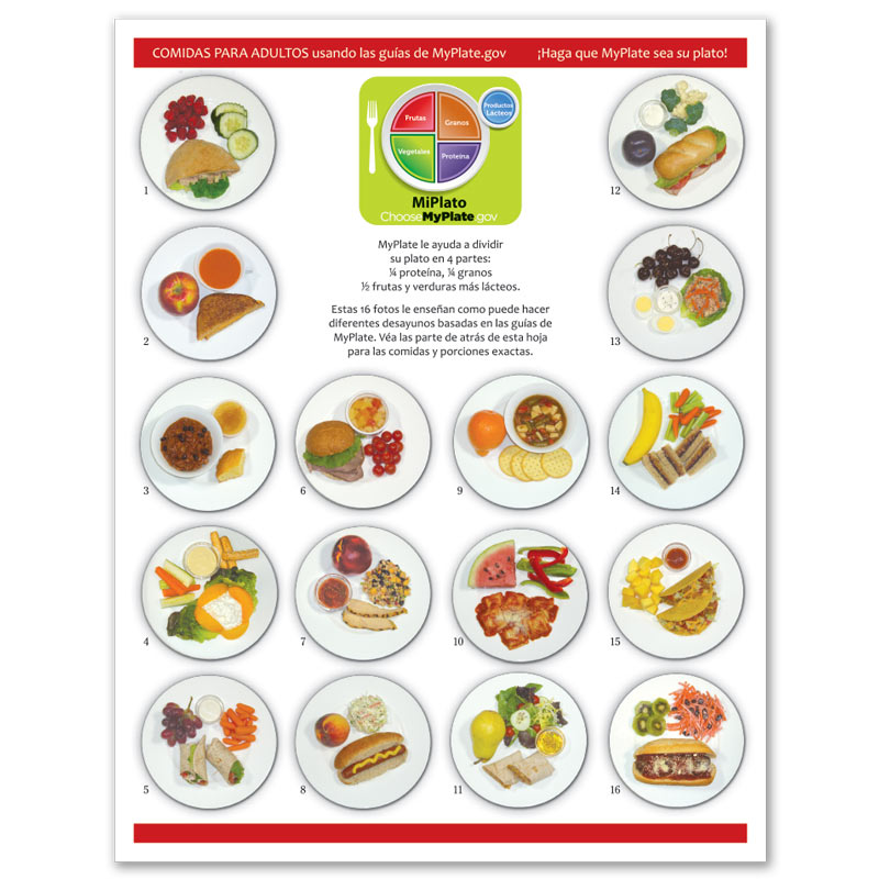 MyPlate Photo Food Pads - Adult Lunch - Spanish