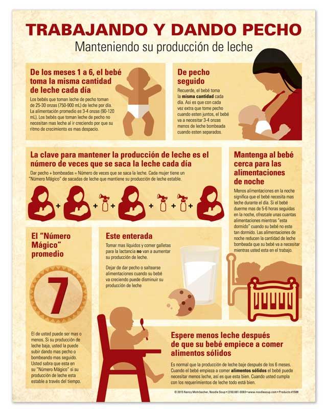 Working & Breastfeeding - Spanish