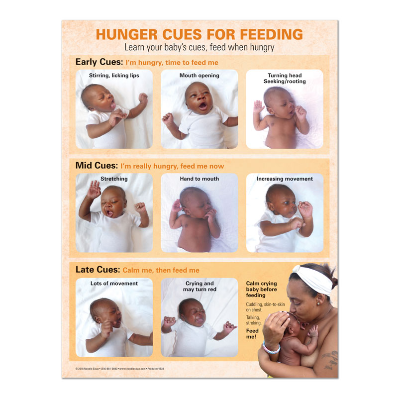 Breastfeeding Hunger Cues Tear Pad - Jasmine English