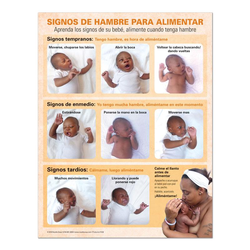Breastfeeding Hunger Cues Tear Pad - Jasmine Spanish
