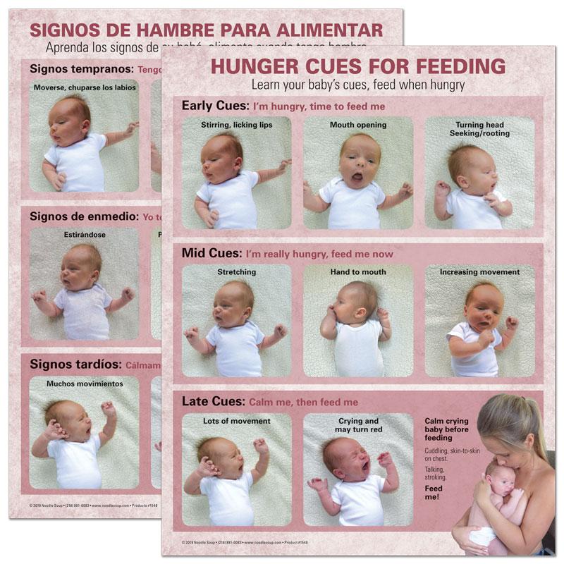 Breastfeeding Hunger Cues Tear Pad - Kenny